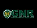 logo-GNR